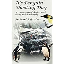 It's Penguin Shooting Day: A true account of the first weeks living with brain injury