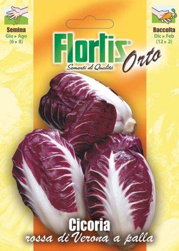Salatsamen - Roter Blattzichorie Verona A Palla von Flortis