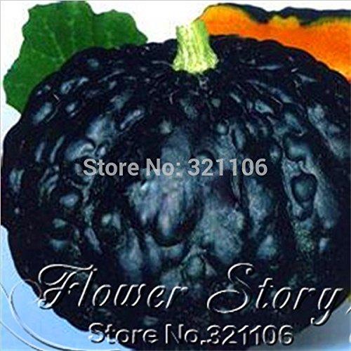 8 Japon graines de citrouille, graines de citrouille, fruits et légumes graines bricolage maison plantiing décoration de jardin doux et délicieux
