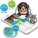 Kippy Vita - GPS y Monitor de Actividad para gatos y perros - Localizador GPS para perros y otros animales - Turquoise Armor