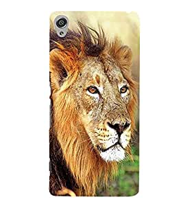 PrintVisa African Panther Lion 3D Hard Polycarbonate Designer Back Case Cover for Sony Xperia X :: Sony Xperia X Dual F5122