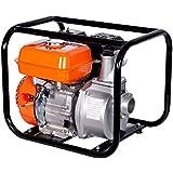 Brast Benzin Wasserpumpe Gartenpumpe 196ccm 4,8kW (6,5PS)