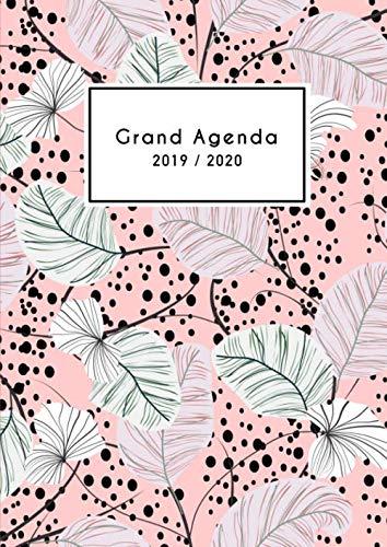 Grand Agenda 2019 2020: Agenda 18mois vertical de Juillet 2019 à Décembre 2020, Semainier grand format A4 21x29cm, simple & graphique, idéal prise de rendez-vous, motif floral rose et vert