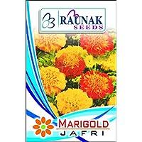 Tradico jafri Marigold Best para Todas Temporada Op de Calidad Semillas, 30Semillas/4Paquetes de Super Agri-Fab Verde Vendido