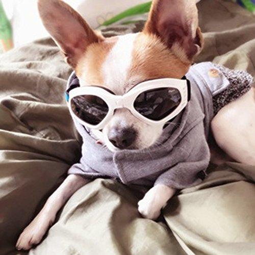 Pet Leso Hund Sonnenbrille winddichte Hund Brille wasserdicht faltbare Anti-UV-Haustier Sonnenbrille kleinen Hund für Katze - Weiß