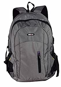 Ideal Polyester 25 Ltr Grey School Backpack