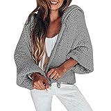 HOOUDO Womens Coat Fashion Casual Winter Autumn Warm Coat Hooded Long Sleeve Zipper Pullover Blouse Shirts Sweatshirt Jacket Overcoat Outwear (XL,Grey)