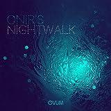 Night Walk [Vinyl Maxi-Single]
