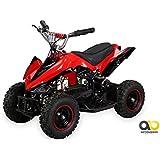 Mini Elektro Kinder Racer 800 Watt ATV Pocket Quad Kinderquad Kinderfahrzeug rot/schwarz