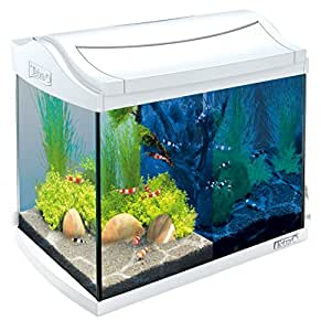 tetra aquaart discovery line led aquarium komplett set 20 liter wei inklusive led beleuchtung. Black Bedroom Furniture Sets. Home Design Ideas