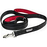 Friends Forever Dual Handle Dog Leash Lead Extra Long 8 Feet Heavy Duty Padded Handle Control Safety Training For Small Medium Large Dogs Puppy