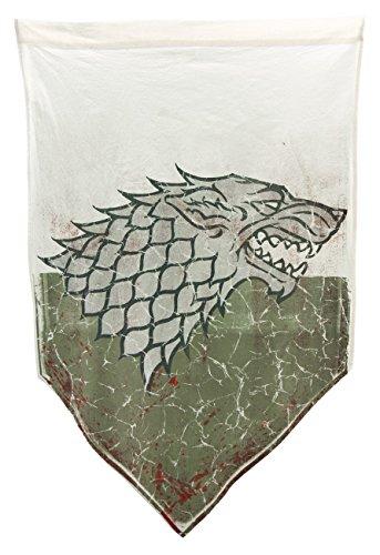 game-of-thrones-stark-invecchiato-battaglia-banner