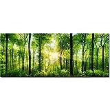 DekoGlas | Glasbild 125x50 cm | Wandbild aus Glas | Glaswandbild aus Echtem Sicherheitsglas | Glasbild mit 2 Stück Haftblechen auf der Rückseite | Wald Bäume