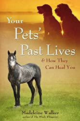 Your Pets' Past Lives (English Edition)
