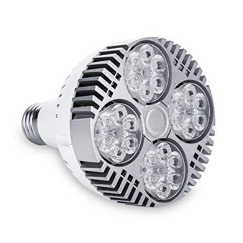 Zerodis 220V 35 Watt E27 Track Glühbirnen 24 LED Spot Glühbirne Nicht Dimmbare 25 ° Abstrahlwinkel Flutlicht Lampe für Wohnzimmer Track Beleuchtung Schlafzimmer Scheinwerfer(4000k)