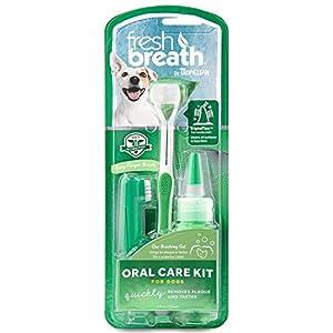 Tropiclean haleine fraîche Oral Care Kit pour chiens, M/L