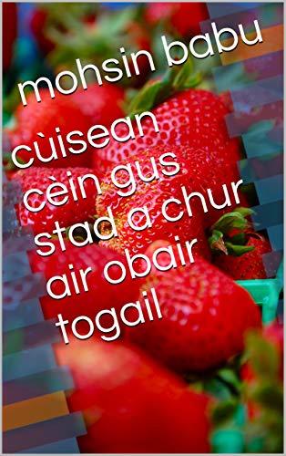 cùisean cèin gus stad a chur air obair togail (Scots_gaelic Edition)
