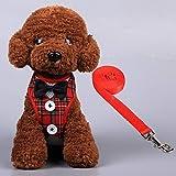 SHUX ShuxFast Hundegeschirr und Zuggeschirr für Kleine und mittelgroße Hunde und Katzen