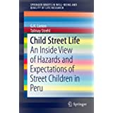 Child Street Life: An Inside View of Hazards and Expectations of Street Children in Peru (SpringerBriefs in Well-Being and Quality of Life Research)