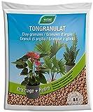 Westland Ton-Granulat für alle Topfpflanzen, Grün- und Blühpflanzen, Ton-Farbe