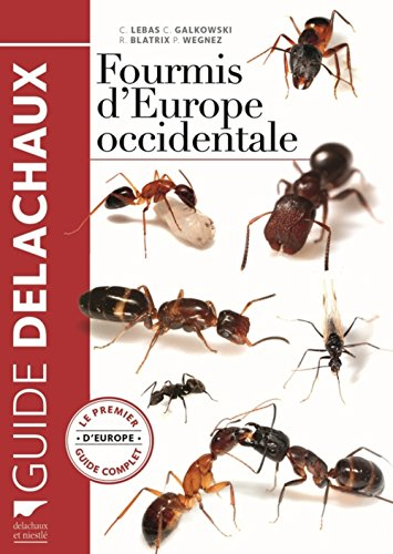 fourmis-deurope-occidentale