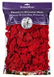 SuperMoss (23149) Reindeer Moss Preserved, rosso, 8oz