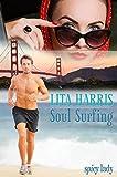 Soul Surfing: Marla und Jesse - eine Lovestory (spicy lady) von Lita Harris