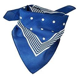 Royal Blue With White Stripes & Polka Dot Bandana Neckerchief by Ties Planet