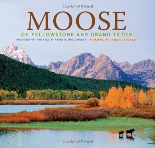 Moose of Yellowstone and Grand Teton by photography by Henry H. Holdsworth (2009-06-01)