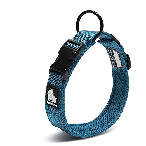 Einstellbare 3M reflektierende Hundehalsband Nylon Haustier Kragen gepolstert 1 ''große atmungsaktive Anti-Choke Anti-Reiben Mesh mit Ring (S Länge: 35-40cm, Blau)