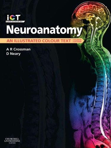 Neuroanatomy E-Book: An Illustrated Colour Text (English Edition)