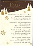 Grave Card - Grave Card - Thinking Of A Wonderful Dad With Love At Christmas - Free Card Holder - C118