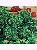 Brokkoli Calabrese Großpackung 50gr