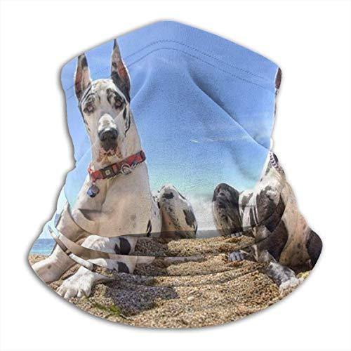Not applicable Cache-cou en polaire pour chien - Anti-soleil - Demi-masque élastique - Coupe-vent