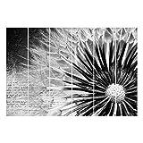 Bilderwelten Schiebegardinen Pusteblume Schwarz & Weiß - Deckenhalterung 6X 250x60cm