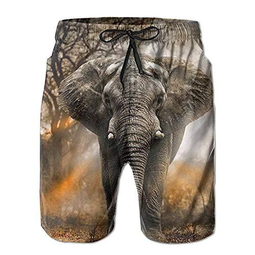 yting Pantalones Cortos de natación para Elefantes, Pantalones de baño de Secado...