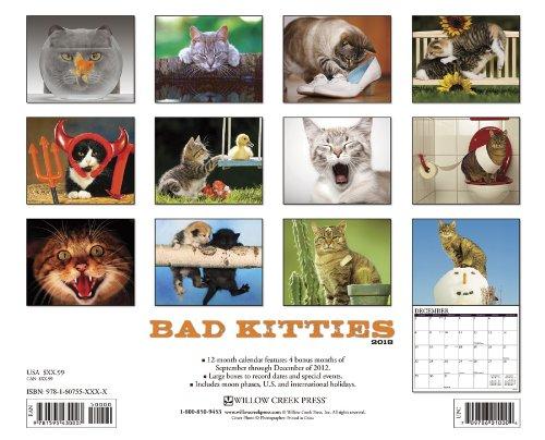 Bad Kitties: Celebrating Good Times & Bad Behavior
