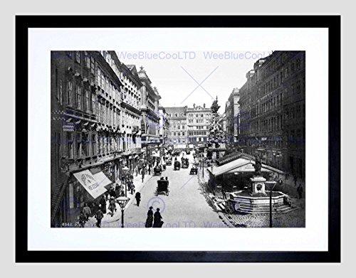the-graben-vienna-austria-hungary-1895-old-bw-black-framed-art-print-b12x2689