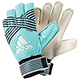 adidas Erwachsene ACE Training Torwarthandschuhe Energy Aqua f17/energy s17/legend Ink f17/Trace Blue f17, 12