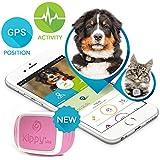 Kippy Vita - GPS y Monitor de Actividad para gatos y perros - Localizador GPS para perros y otros animales - Pink Angel