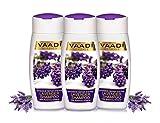 VALUE PACK VON 3 -Lavendel Shampoo mit Rosmarin-Extrakt | Intensive Repair Shampoo - ohne Parabene --Sulfat frei - Kopfhaut Therapie - Feuchtigkeit Therapie - Für alle Haar Typ 100% Kräuter (110 ml