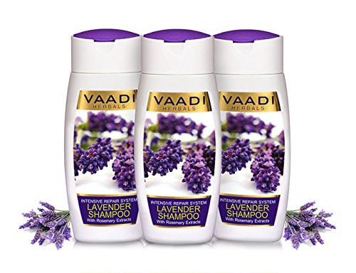 VALUE PACK VON 3 -Lavendel Shampoo mit Rosmarin-Extrakt | Intensive Repair Shampoo - ohne Parabene --Sulfat frei - Kopfhaut Therapie - Feuchtigkeit Therapie - Für alle Haar Typ 100% Kräuter (110 ml (Pflege Value Pack)