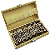 Forstnerbohrer Satz 15 teilig Holz Bohrer 10 bis 50mm inkl. Holzkassette B1932