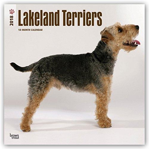 Descargar Libro Lakeland Terriers 2018 - 18-Monatskalender: Original BrownTrout-Kalender - mit freier DogDays-App de Browntrout Publishers