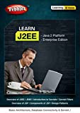 Pebbles Learning J2EE (DVD)