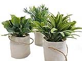 Spetebo Deko Kunstpflanze mit Tragetasche klein - 3er Set - Tisch Deko Pflanze künstlich Kunstblume grün - 2