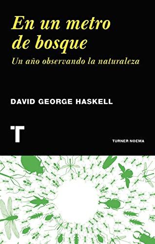 En un metro de bosque (Noema) por David George Haskell
