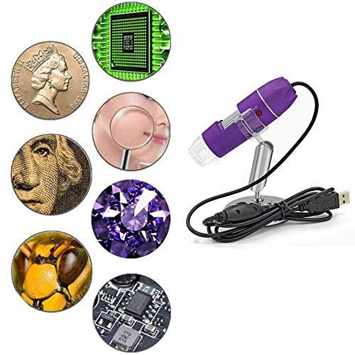 USB-Mikroskop mit 50- bis 500-facher Vergrößerung Mini-Hand-Endoskop-Inspektionskamera mit 8 LEDs und Metallstativ, kompatibel mit iPhone, iPad, Android-Smartphone, Mac, Windows