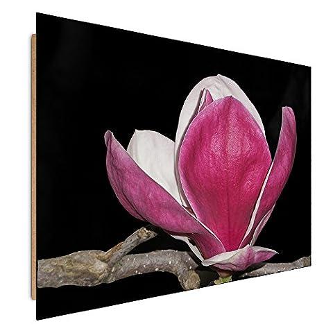 Feeby. Tableau - 1 partie - 60x30 cm, Décoration Murale Image Imprimée Deco Panel, MAGNOLIA, NATURE, ROSE