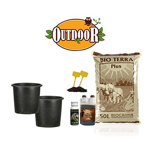 Kit autofiorenti biologique 2 plantes – Outdoor + offert